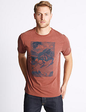 Cotton Rich Printed Crew Neck T-Shirt, TERRACOTTA, catlanding
