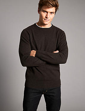 Pure Cashmere Crew Neck  Jumper, BROWN, catlanding