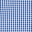 Girls' Skin Kind™ Pure Cotton Gingham Dress, BLUE, swatch