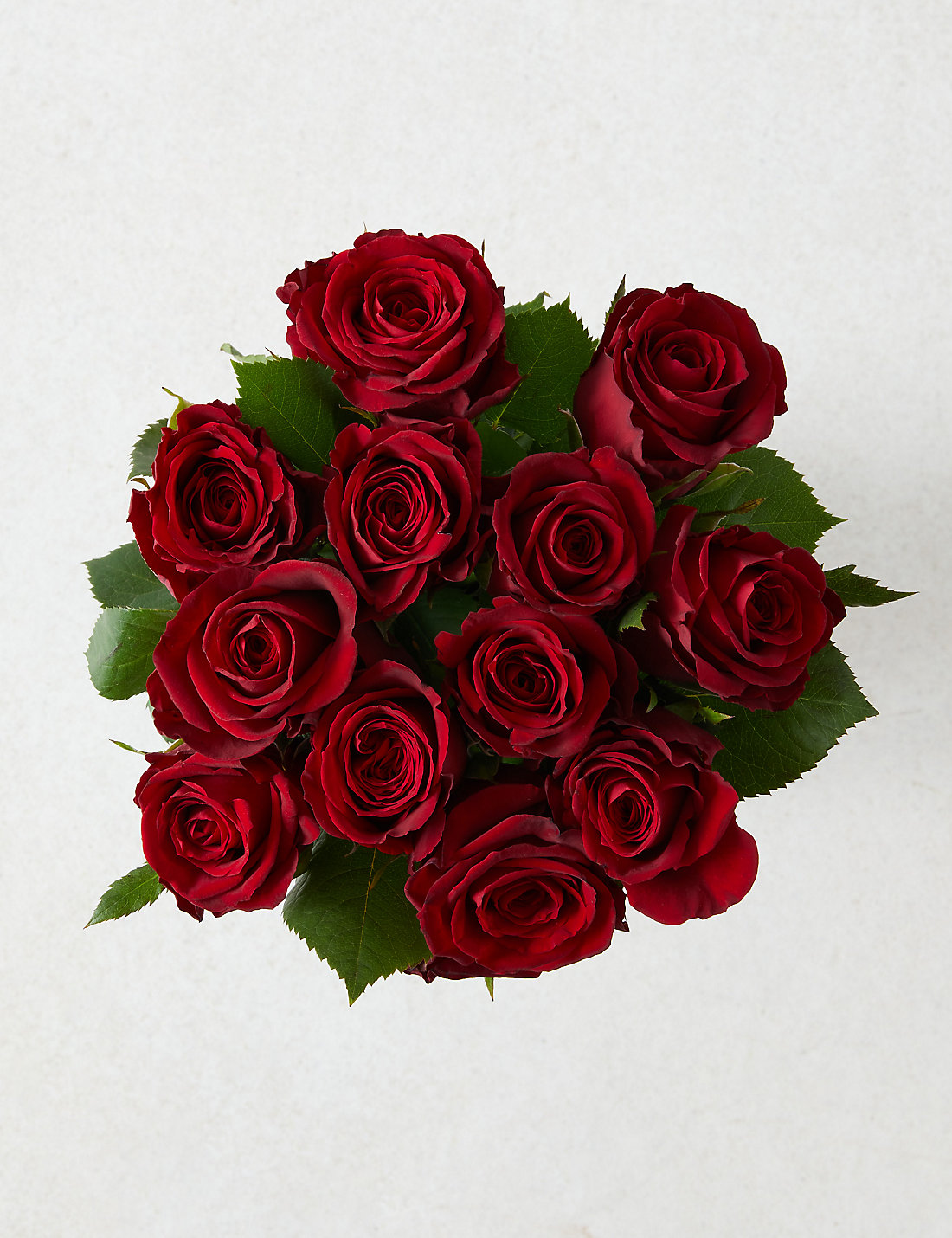 Valentines red rose gift selection pre order available from 10th f valentines red rose gift selection pre order available from 10th february 2018 negle Choice Image