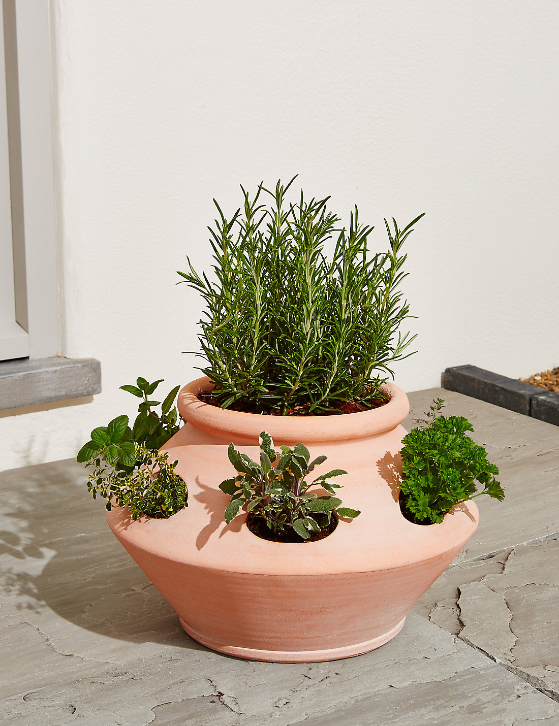 Herb Planter Extraordinary Terracotta Herb Planter  M&s Review