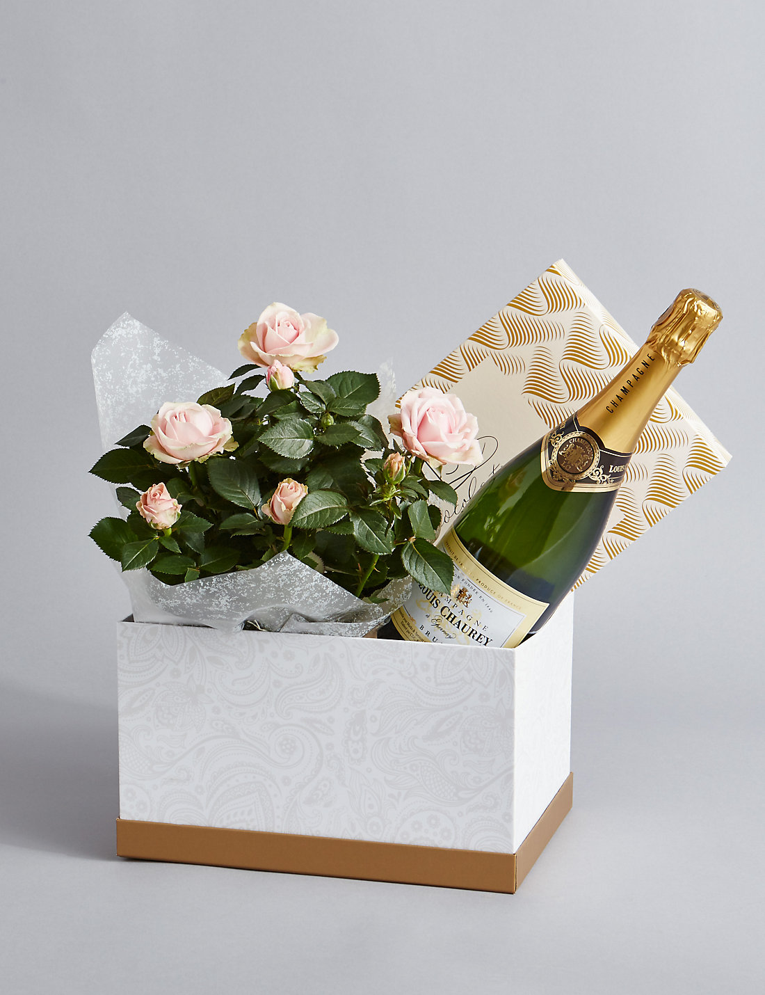 Champagne Rose Plant Swiss Chocolate Hamper