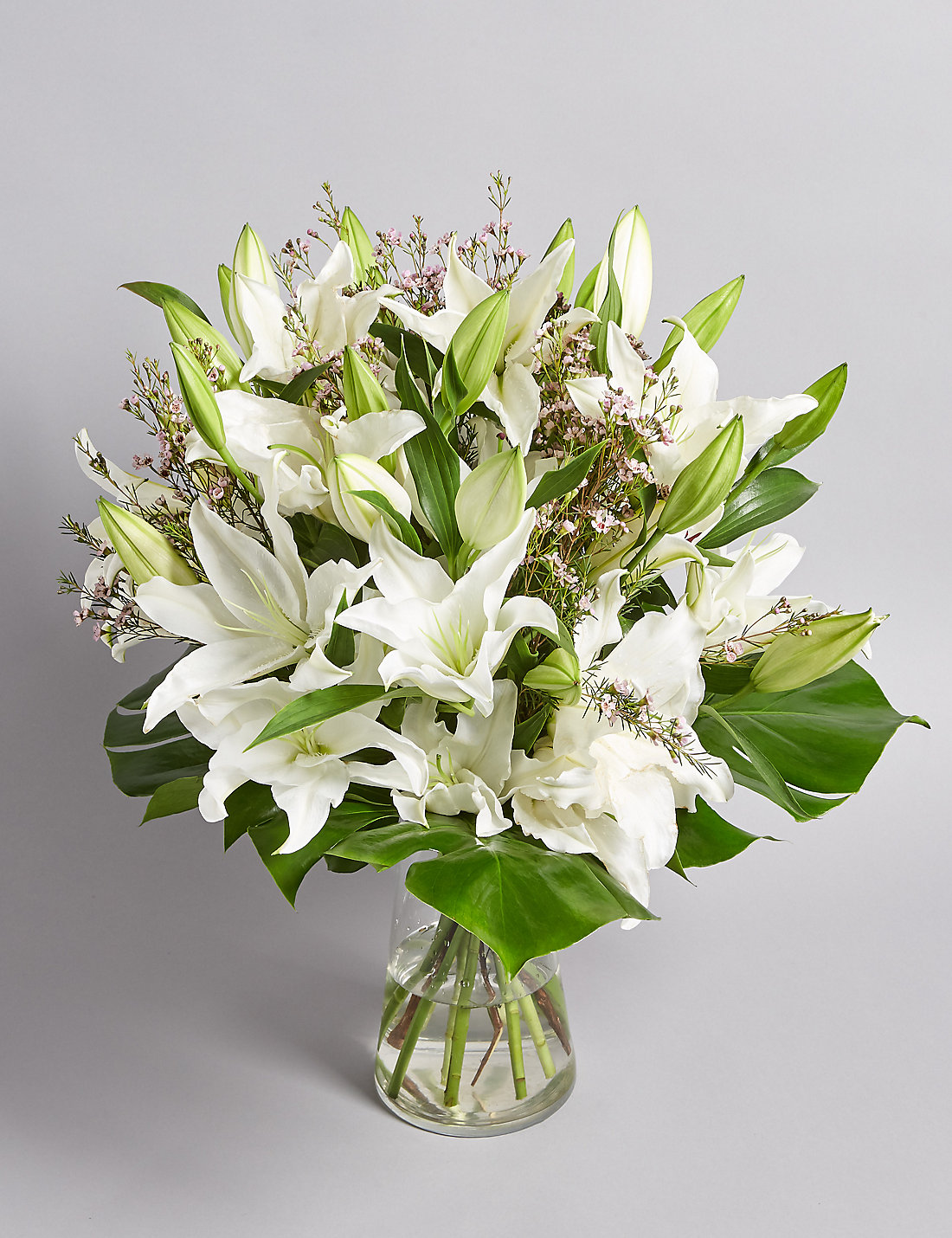 Lilies | White Lilies Flowers, Lily Bouquets & Plants | M&S