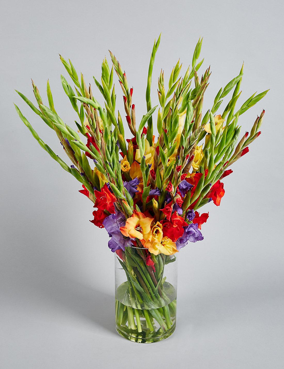 gladioli abundance bouquet m u0026s