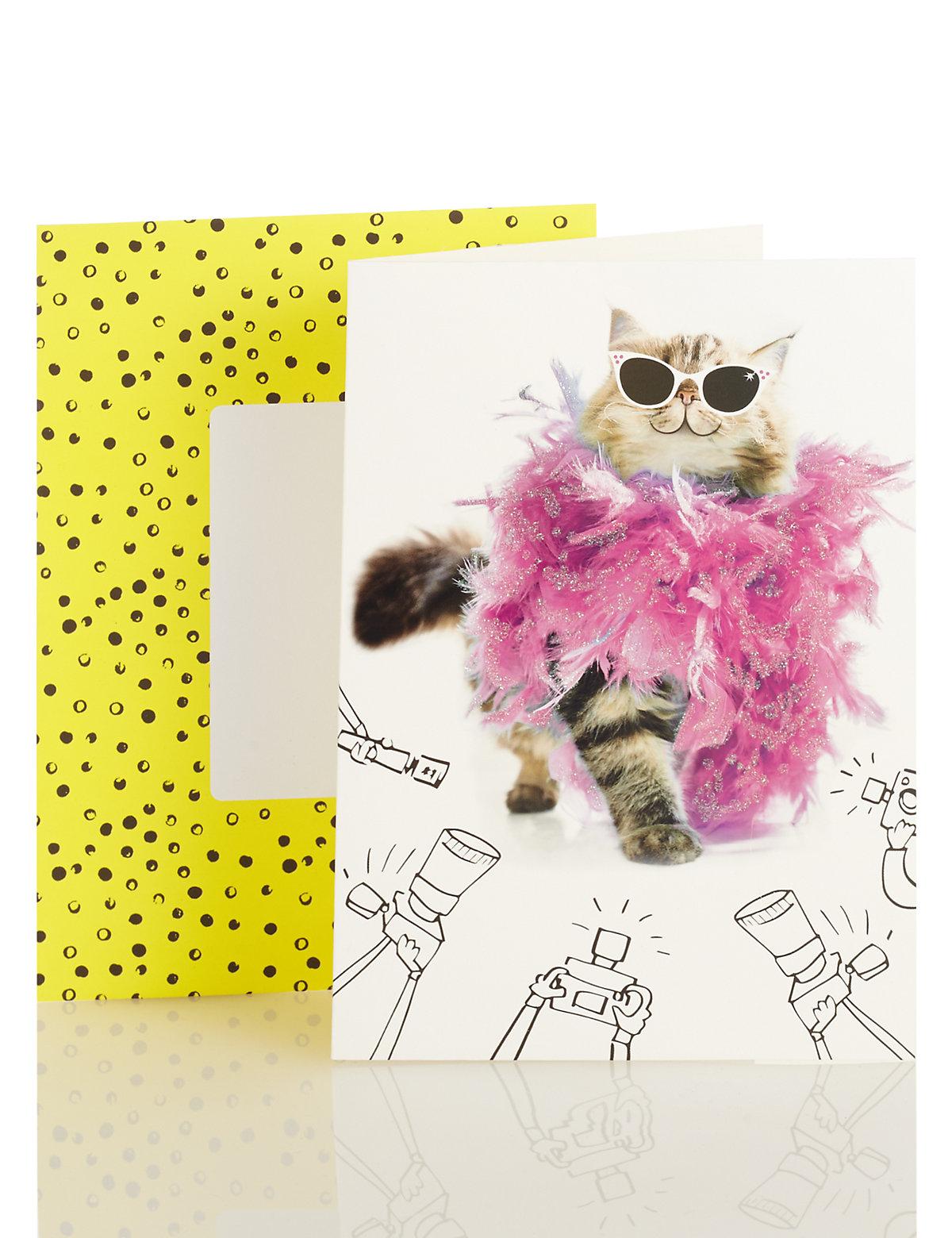 Cameras & Cat Blank Card