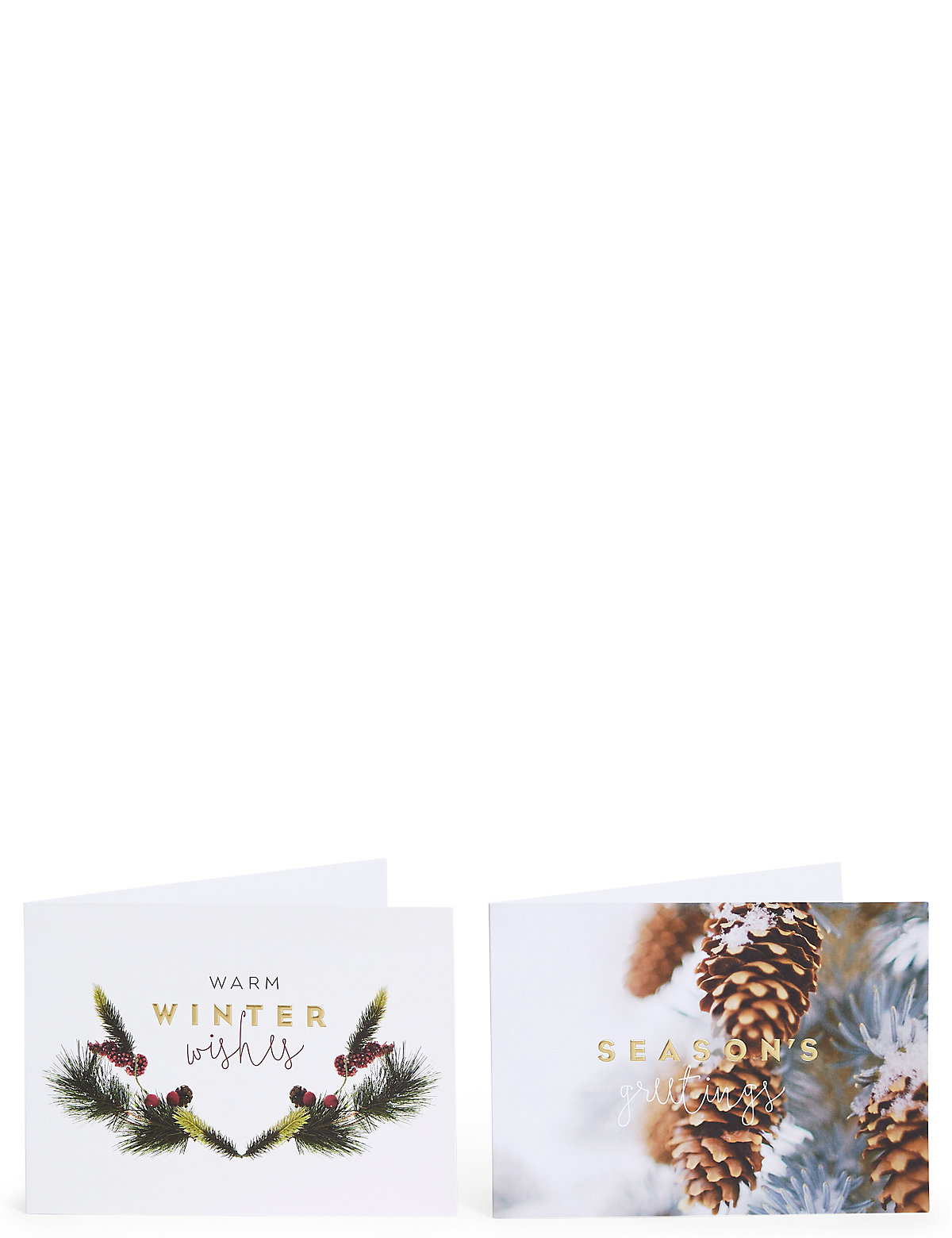 Festive Foliage Christmas Charity Cards Pack of 20