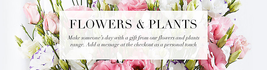 Shop all flowers and plants