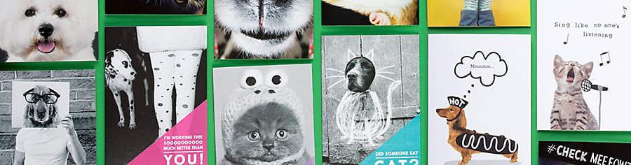 Mark a special occasion with one of our pet and animal cards