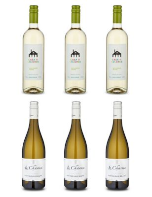 White Stunners Mixed Wine Case - Case of 6