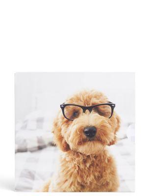 Dog Photographic Gift Card
