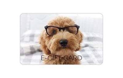 Dog Photographic E-Gift Card
