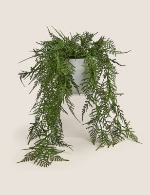 Artificial Trailing Asparagus Fern In Pot