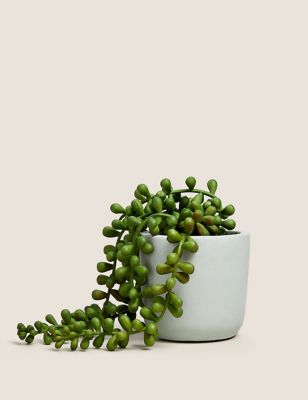 Artificial Mini String of Pearls in Pot