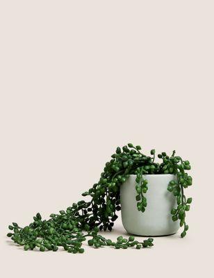 Artificial Mini Trailing Plant in Pot