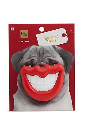 Dog Toy Smile, , catlanding