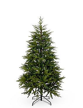6Ft Fraser Fir Christmas Tree, , catlanding