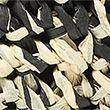 Straw Cross Body Bag - blackmix