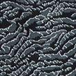 Animal Print Tie Front Midi Shift Dress - blackmix