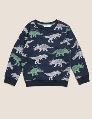 Cotton Dinosaur Sweatshirt (2-7 Yrs)
