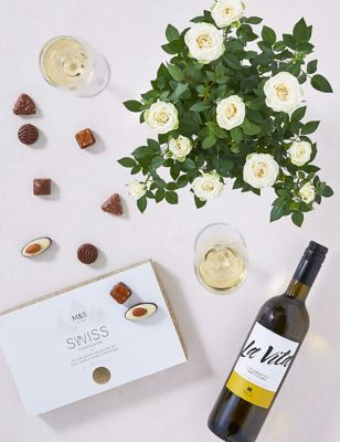 Rose Plant with White Wine & Chocolates Gift