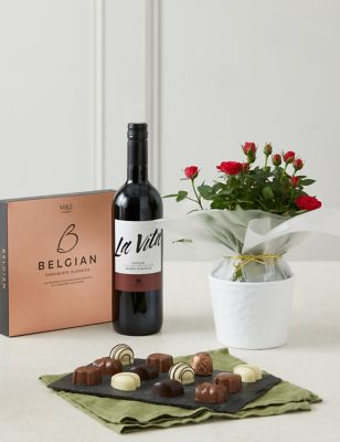 Rose Plant with Red Wine & Chocolates Gift