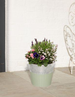 Large Garden Planter
