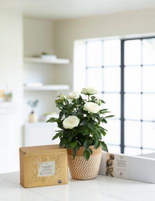 Yellow Rose Ceramic