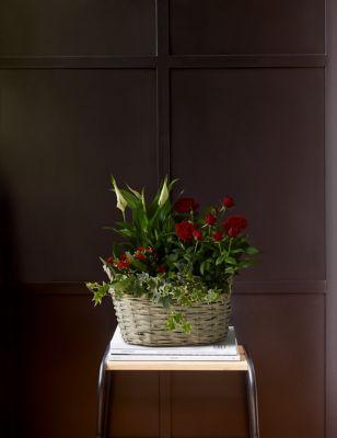 Autumn Flowering Basket