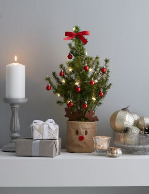 Novelty Letterbox Tree with Lights (Delivery from 9thNovember2021)