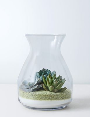 Succulent Bottle Garden Kit
