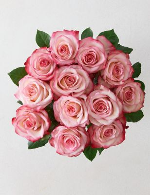 Paloma Roses Bouquet