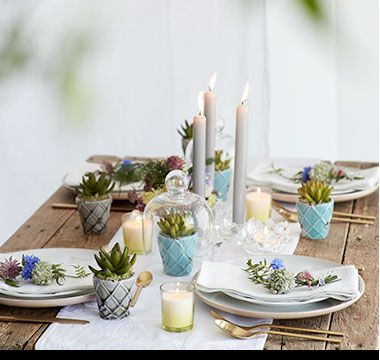 Party dinner table ideas with candles and plants